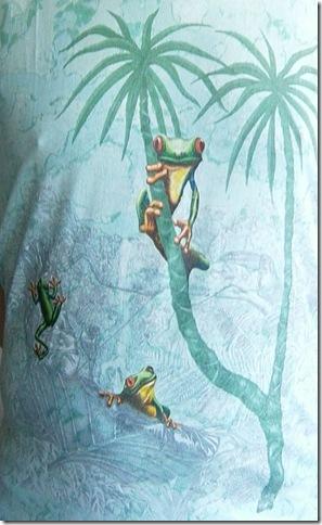 kikker-T-shirt