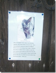 honorary cat