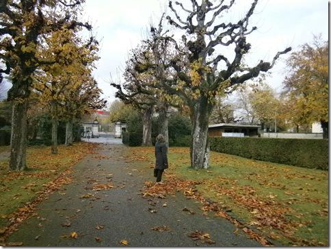 Schosshaldenfriedhof