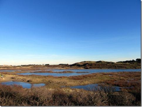 blauwselmeer